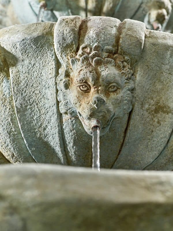Lioness Fountain