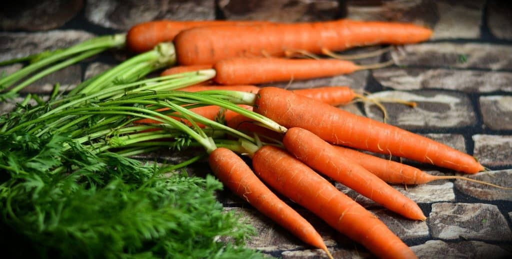 An image of freshly picked carrots.