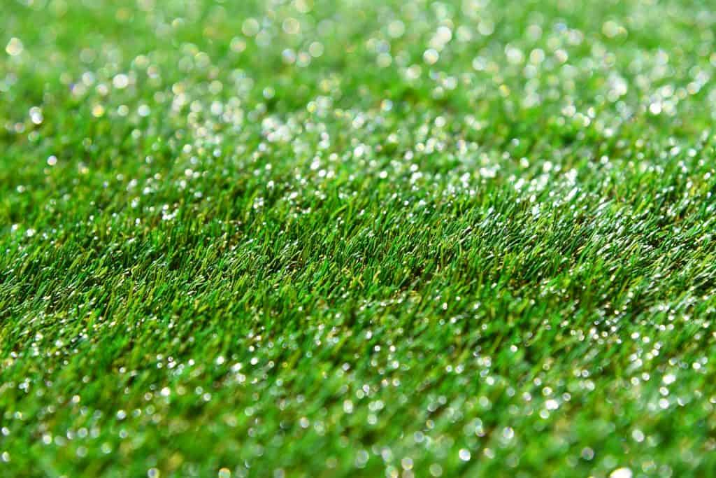 An image of artificial turf.